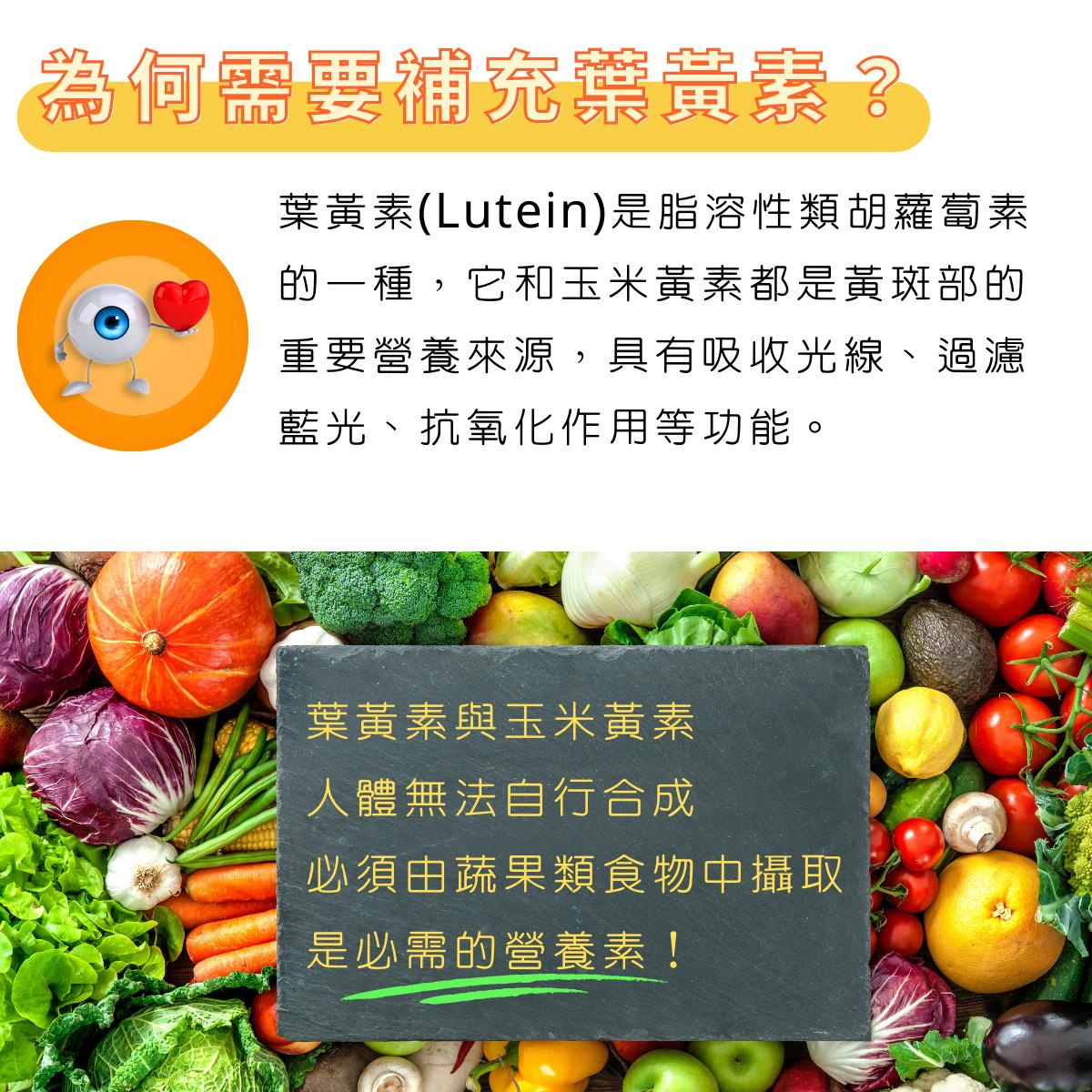 天天舒視 複方葉黃素膠囊:日本專利游離型葉黃素  明潤保養給你清晰看世界